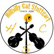 Radio hillbilly-cat