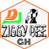 Radio Dj Ziggy Bee pro