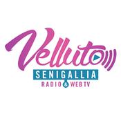 Radio Radio Velluto